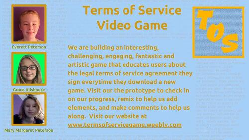 Terms of Service Video Game Research